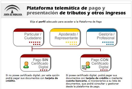 modelo046-plataformadepago